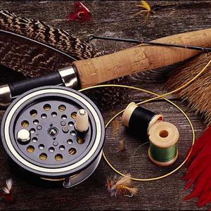 Охотничьи и рыболовные магазины Волосово